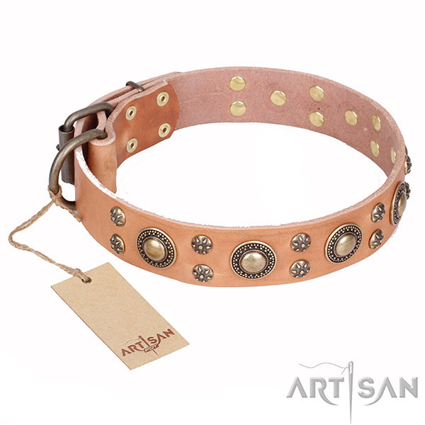 Tan Dog Collar of Unique FDT Artisan Design