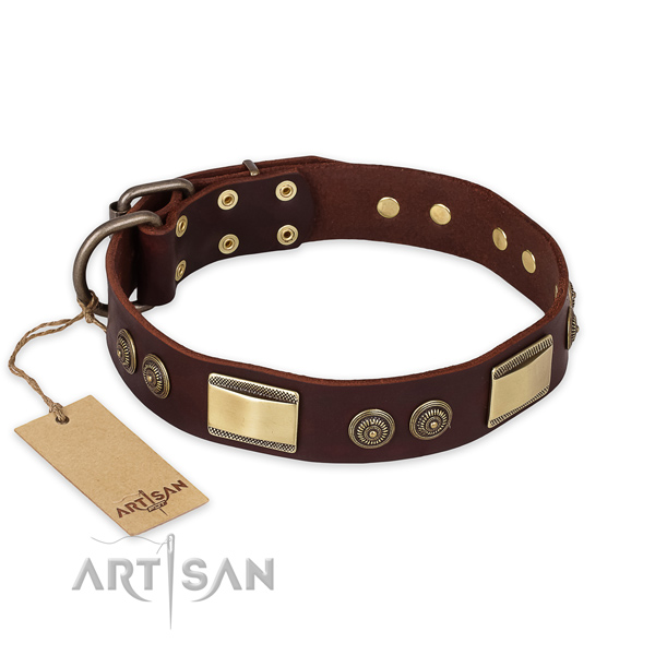 Stylish Dog Collar with Bronze Look Adornment