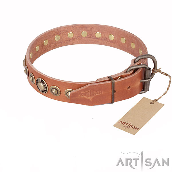Tan Leather Dog Collar with Old-like Brass-plated Steel Hardware