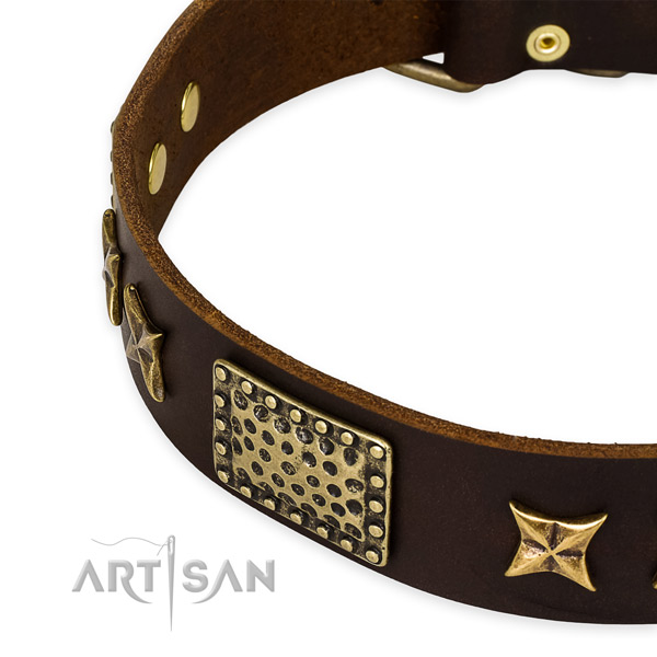 Royal Design Dog Collar with Bronze Look Decor