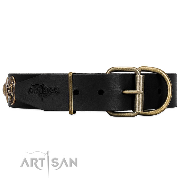 Rust-resistant Buckle and D-ring on FDT Artisan Walking Dog Collar