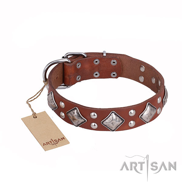 Leather Dog Collar with Rust Resistant Decorations