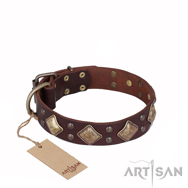 Amazing Design Brown Leather Dog Collar