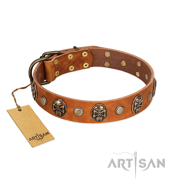 Tan Leather Dog Collar for Daily Comfortable