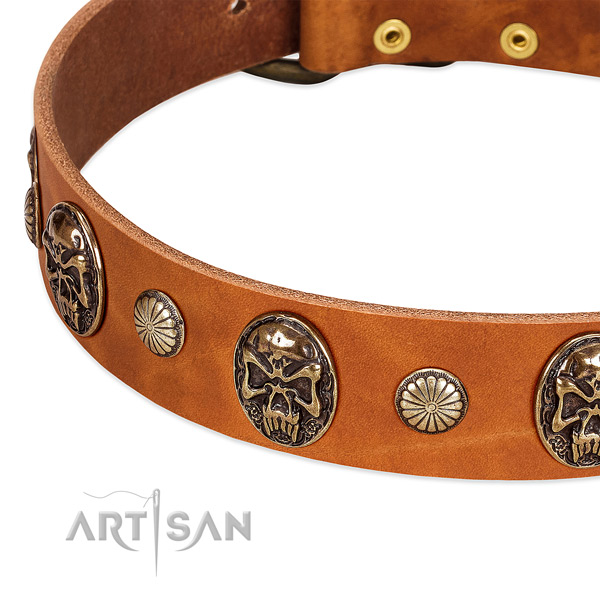 Old Bronze-like Plated Skulls and Tiny Studs handset on Dog Collar