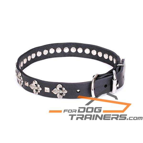 Dog Leather Collar with Additional Rivets