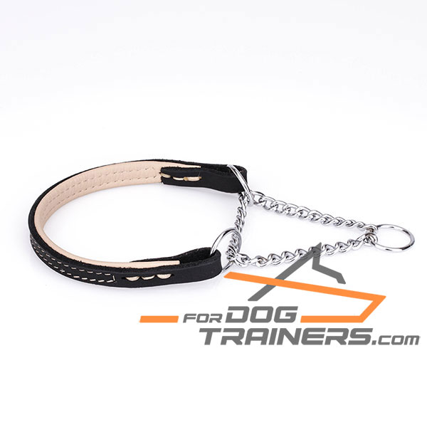 Martingale Dog Collar with Strong Chrome Plated Chain