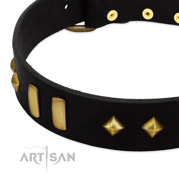 Stunning design leather dog collar with old- bronze-like plates and studs