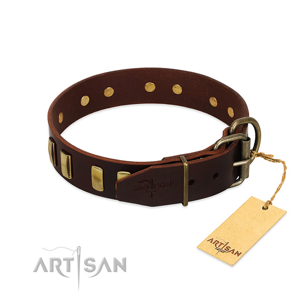 Unique Leather Dog Collar Adorned with Bronze-like Plated Adornments