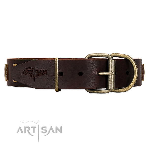 Rust Resistant Old Bronze-like Plated Fittings on Brown Leather Dog Collar