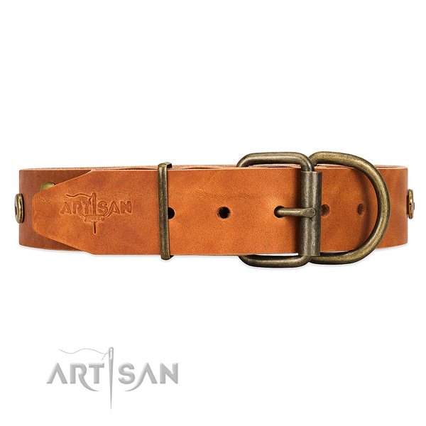 Tan leather dog collar with traditional buckle for easy fit