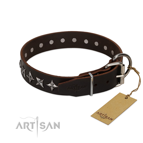Brown leather FDT Artisan dog collar with chrome-plated fittings