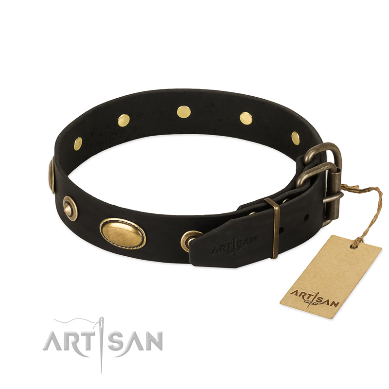 Decorative Leather Dog Collar with Reliable Fittings