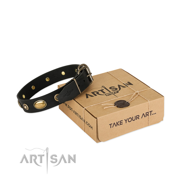 Premium Quality Black Leather Dog Collar for Walking