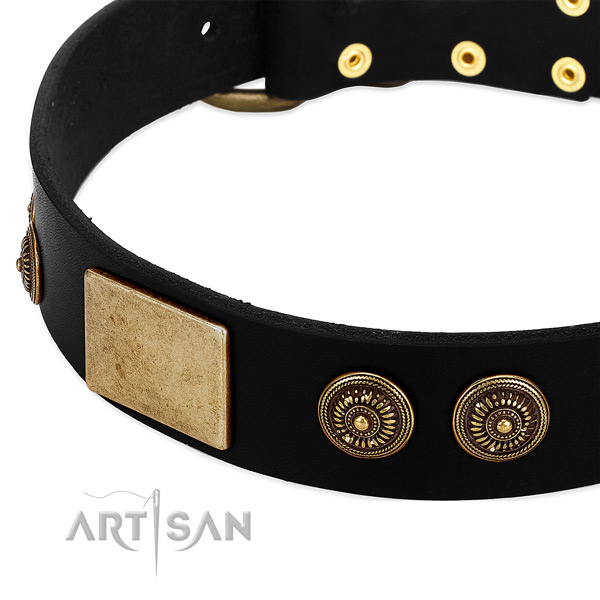 Black dog collar with large plates and engraved studs