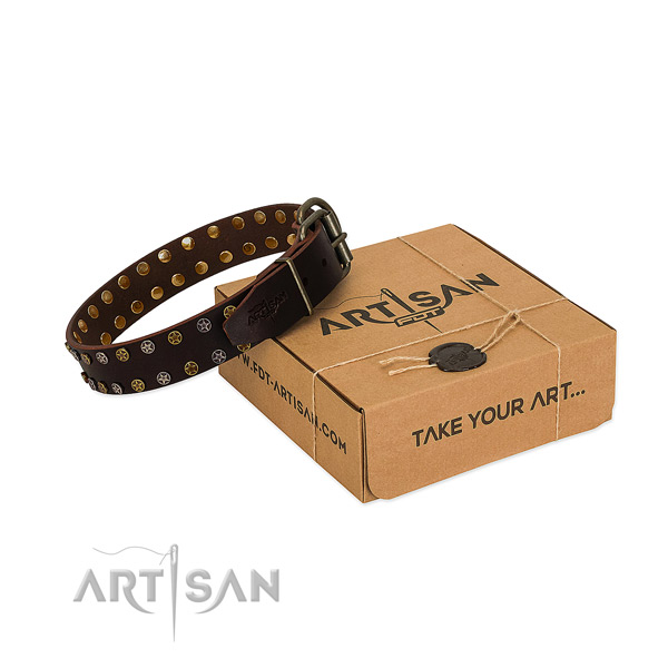 Strong brown leather dog collar with decorations
