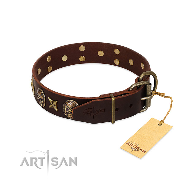 Brown dog collar with old bronze-like hardware