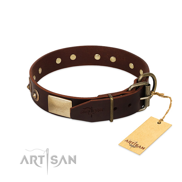 Brown leather dog collar with durable fittings