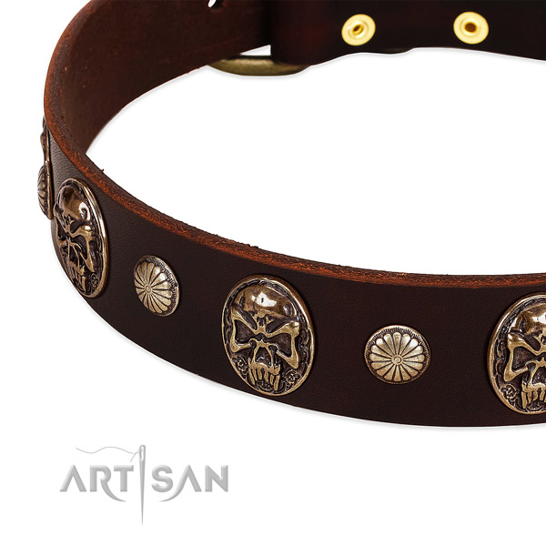 Brown dog collar with conchos and medallions