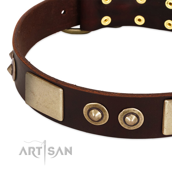Tremendous brown leather dog collar with riveted