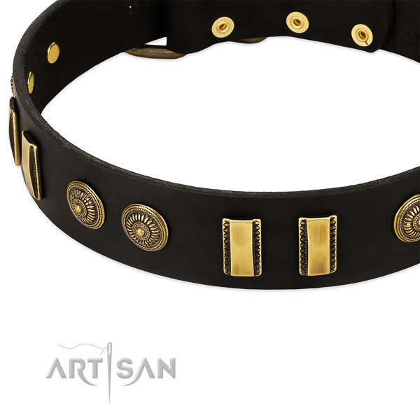 Convenient black leather dog collar with decorations