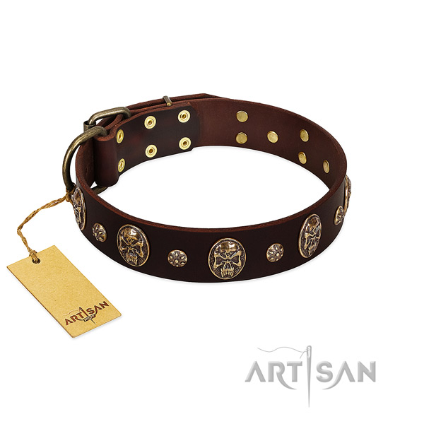 Brown handmade Artisan leather dog collar