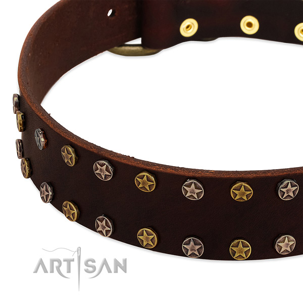 Old-bronze-like stars hand set in 2 rows on FDT Artisan dog collar