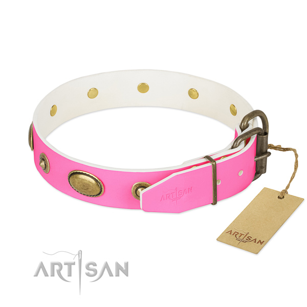 Decorative Leather Dog Collar with Dependable Fittings