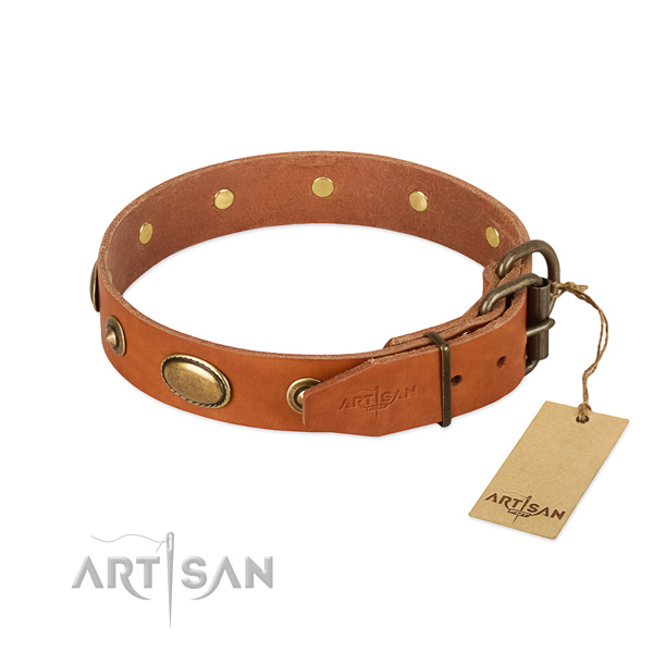 Adjustable Leather Dog Collar with Dependable Fittings