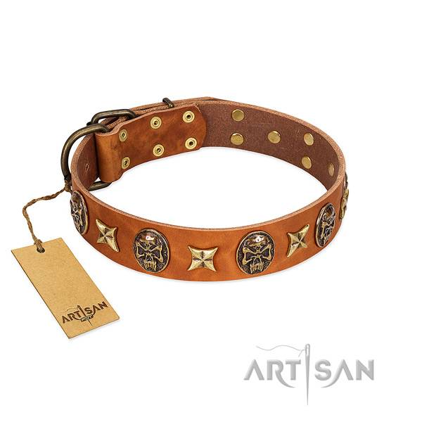 Handmade Artisan leather dog collar at affordable price