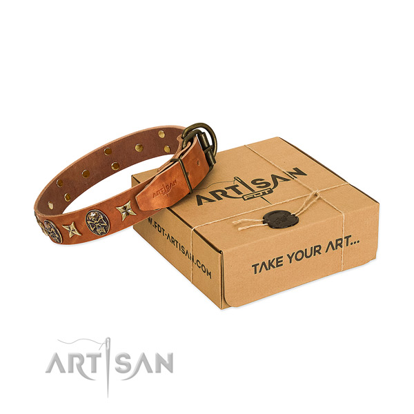 Tan leather dog collar with extraordinary set of