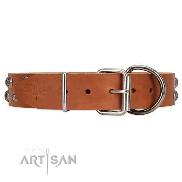 FDT Artisan leather dog collar equipped with chrome-plated hardware