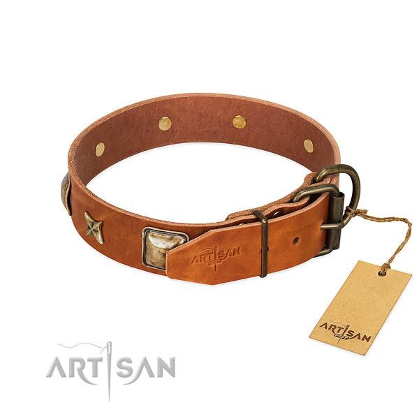 Tan dog collar with old bronze-like hardware