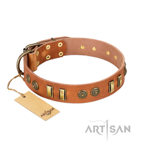 Tan leather dog collar with riveted circles and plates