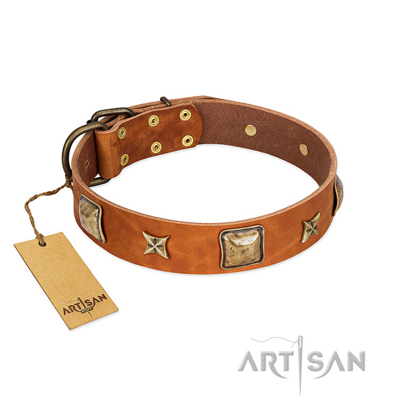 Tan Artisan leather dog collar for safe walks