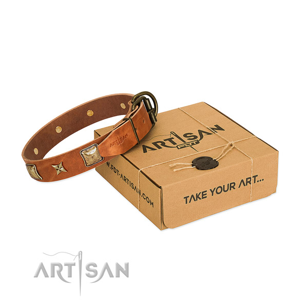Elegant tan leather dog collar with riveted adornments