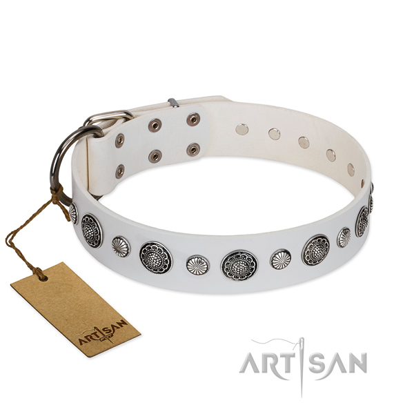 Decorated white leather dog collar for comfortable wear