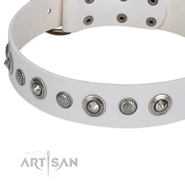 Chrome-plated conchos on white FDT Artisan leather dog collar