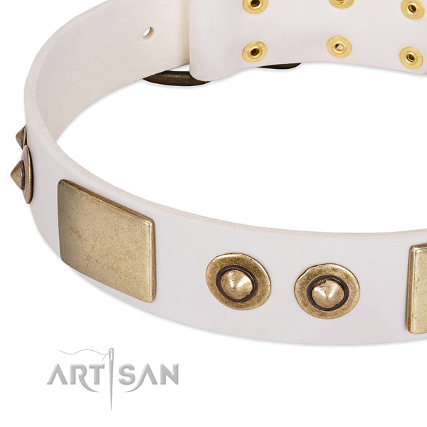 White Dog Collar with Extraordinary Mix of Decor