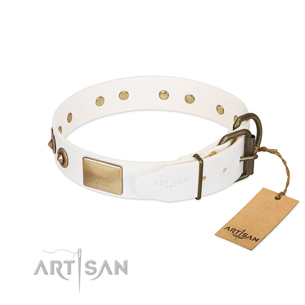 Leather Dog Collar with Carefully Riveted Hardware