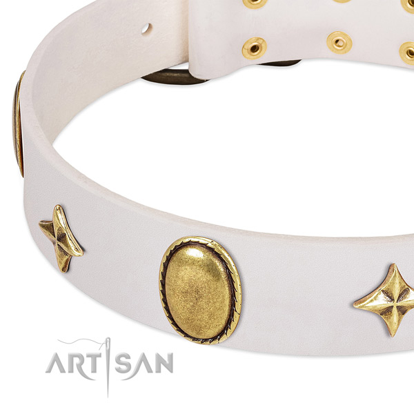Stars and oval plates look great on white leather dog collar