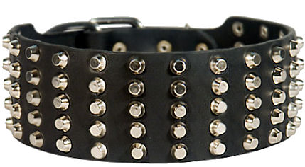 Dog collar leather super wide