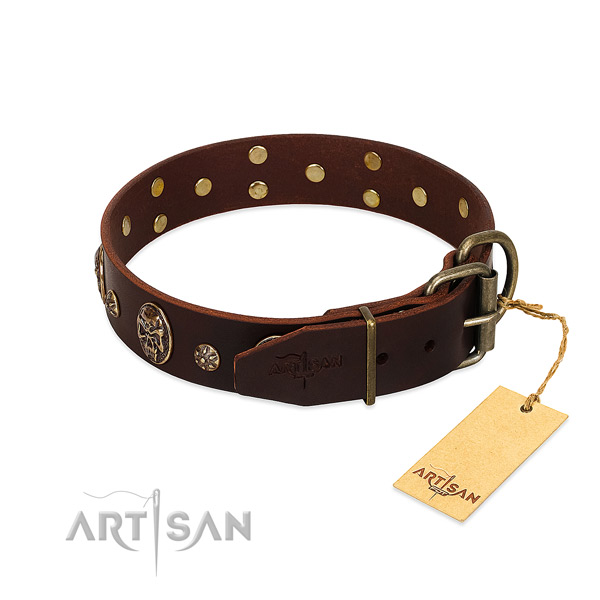 Brown dog collar with old bronze-like fittings