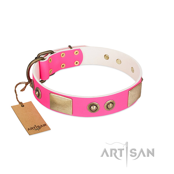 Designer Pink Leather Dog Collar for Walking in Style