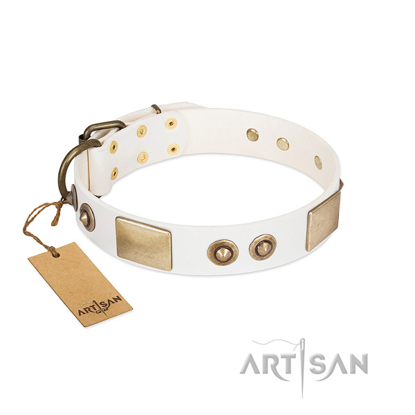 White Leather Dog Collar for Daily Wear