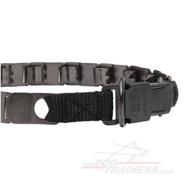 Dog neck tech pinch collar with special buckle