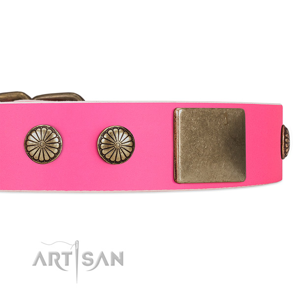 Bright pink leather dog collar for lady dogs