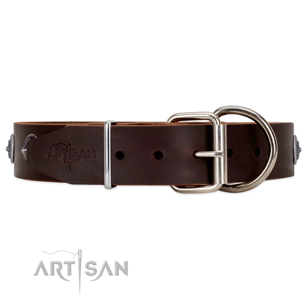 Unique style Brown leather dog collar with tough fittings