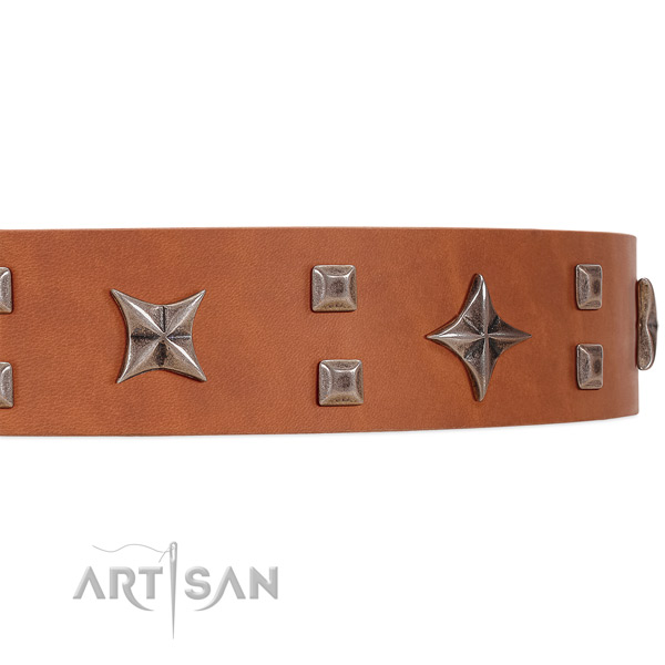 Luxurious leather dog collar with extremely stylish decorations