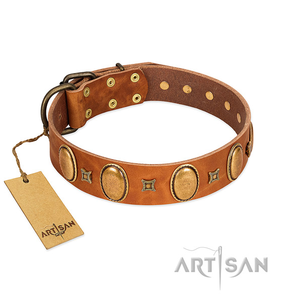 Tan leather dog collar with vintage style decorations